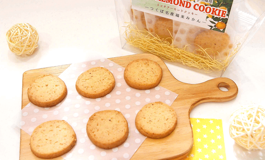 リッチアーモンドクッキー 〈ソルト〉|株式会社アオイ