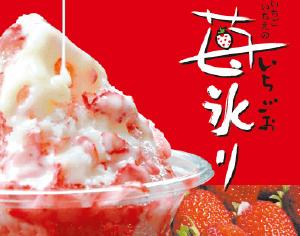 高知県大月町 苺氷り|ケータリング・お弁当販売・移動販売|株式会社アオイ