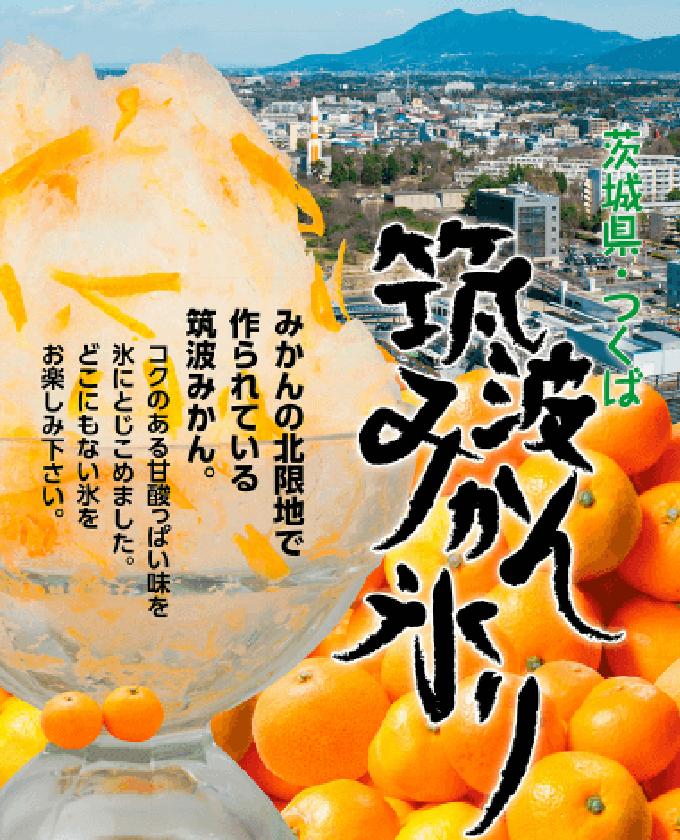 筑波みかん氷り・福来みかん氷り|ケータリング・お弁当販売・移動販売|株式会社アオイ